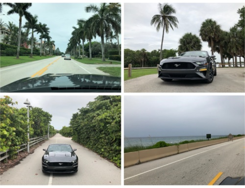 Driving Florida's A1A in a rented Mustang convertible