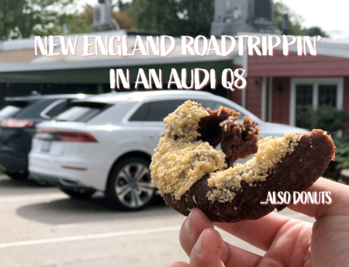 Scenes from a road trip: Family time and the Audi Q8