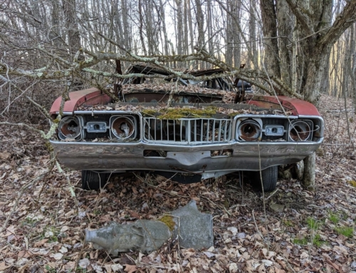Hooniverse Asks: Why do people leave cars in the Woods?